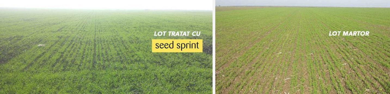 demonstratie-tratament-seed-sprint