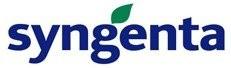 Syngenta - legume
