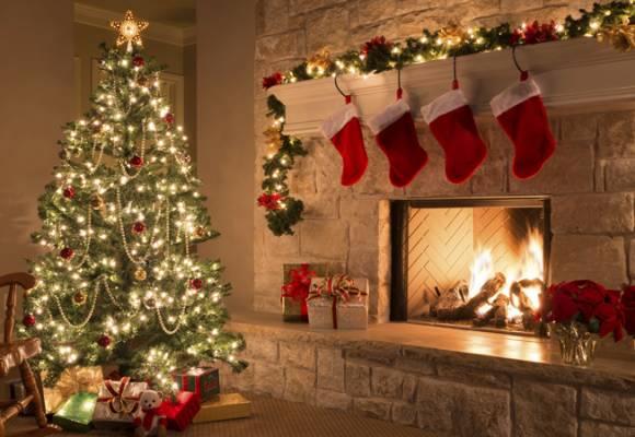 Decembrie, luna cadourilor pe bune la SemintePlante.ro!