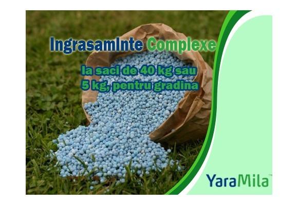Fertilizarea de baza la legume